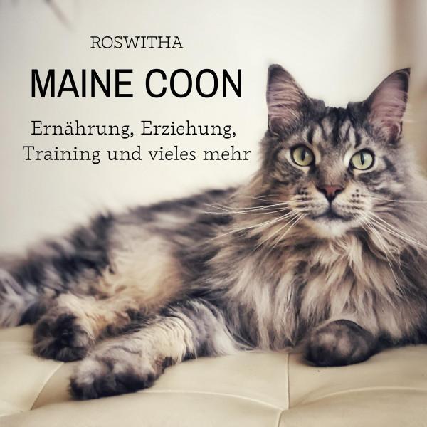 Maine Coon - Ernährung, Erziehung, Training und vieles mehr