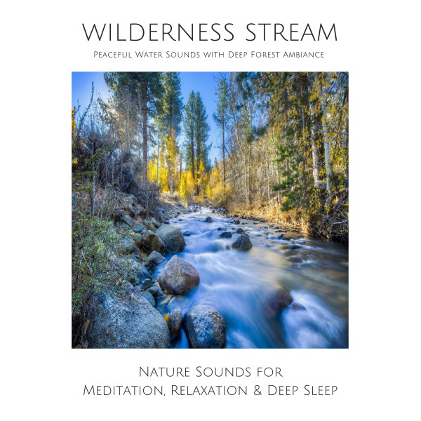 Wilderness Stream: Peaceful water sounds with deep forest ambience - Nature sounds for meditation, studying, focussing, relaxation & deep sleep